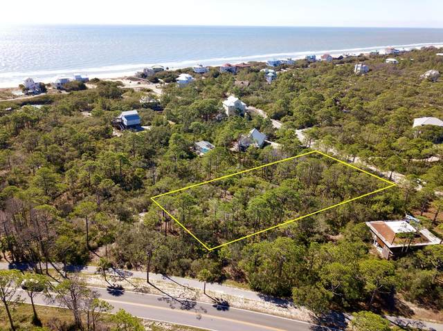 1204 Sea Dune Dr, ST. GEORGE ISLAND, FL 32328 (MLS #303987) :: The Naumann Group Real Estate, Coastal Office