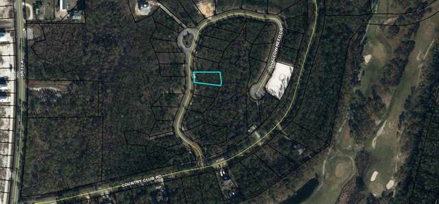 38 Shallow Reed Dr, PORT ST. JOE, FL 32456 (MLS #304195) :: Anchor Realty Florida