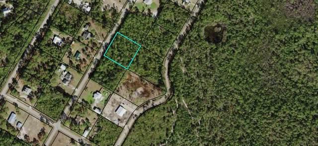 282 Carroll St, EASTPOINT, FL 32328 (MLS #304221) :: Coastal Realty Group