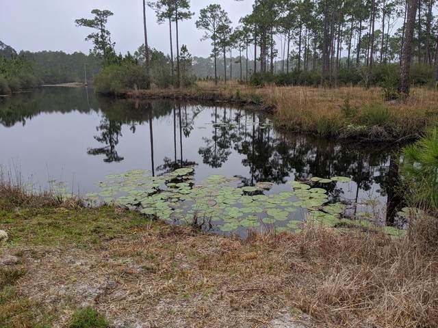 135 Baywood Dr, CARRABELLE, FL 32322 (MLS #304232) :: Anchor Realty Florida
