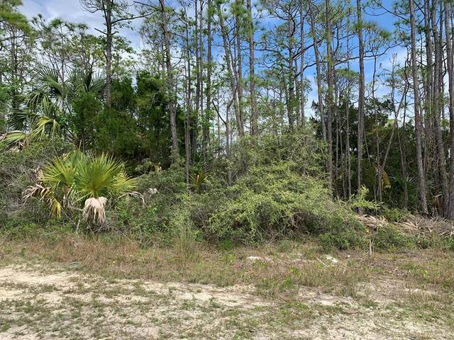 1735 Kingfisher Rd, ST. GEORGE ISLAND, FL 32328 (MLS #304315) :: Anchor Realty Florida
