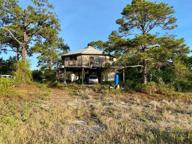 343 Lubbers Ln, CARRABELLE, FL 32322 (MLS #304484) :: The Naumann Group Real Estate, Coastal Office