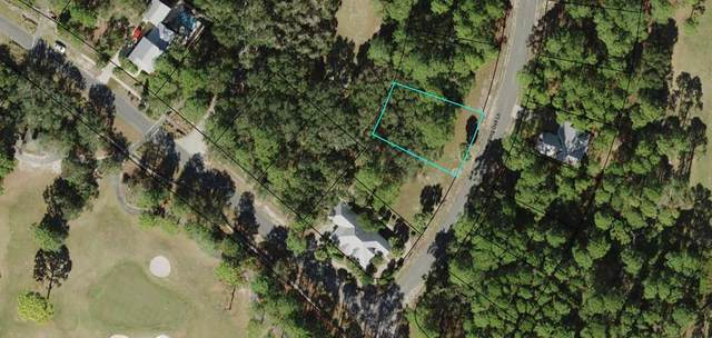 109 Laughing Gull Ln, CARRABELLE, FL 32322 (MLS #304500) :: Anchor Realty Florida