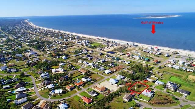 110 Ocean Ridge Ln, PORT ST. JOE, FL 32456 (MLS #304679) :: The Naumann Group Real Estate, Coastal Office