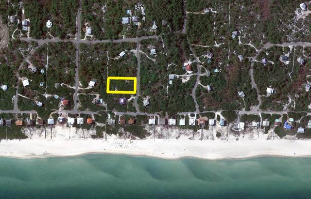 1444 Camellia Ct, ST. GEORGE ISLAND, FL 32328 (MLS #304829) :: Anchor Realty Florida