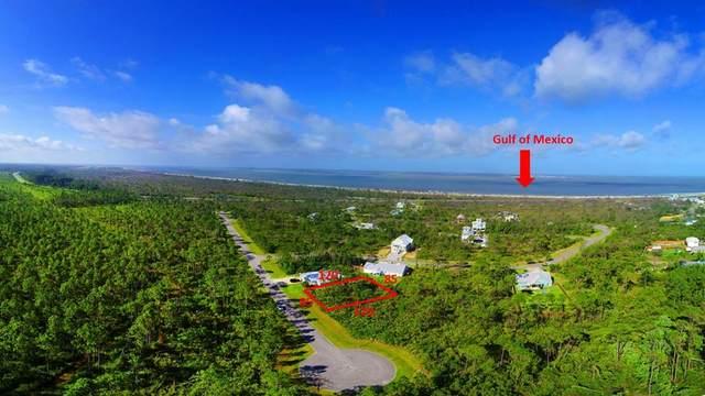 LOT 17 Sea Turtle Dr Lot 37, PORT ST. JOE, FL 32456 (MLS #304886) :: The Naumann Group Real Estate, Coastal Office