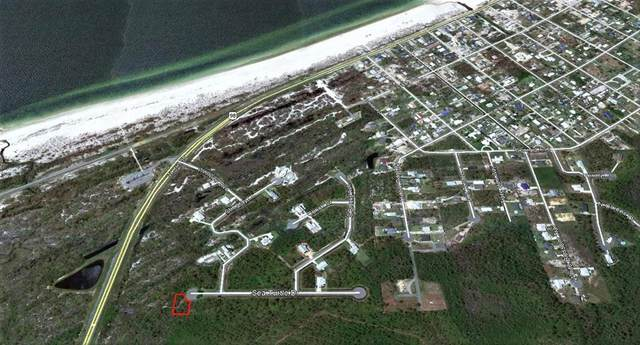 Lot 33 Sea Turtle Dr, PORT ST. JOE, FL 32456 (MLS #304948) :: The Naumann Group Real Estate, Coastal Office