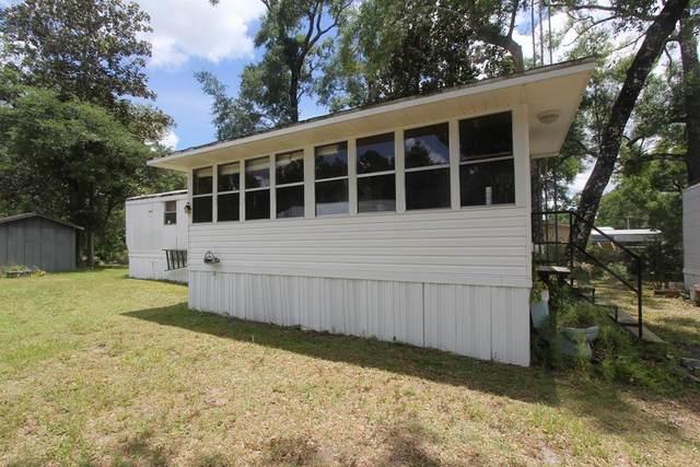 164 N Duck Ave, WEWAHITCHKA, FL 32465 (MLS #305001) :: The Naumann Group Real Estate, Coastal Office