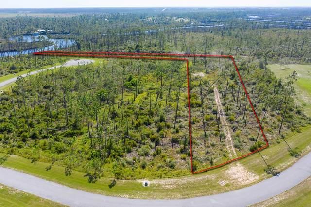 97 Wide Water Cir, WEWAHITCHKA, FL 32465 (MLS #305267) :: The Naumann Group Real Estate, Coastal Office