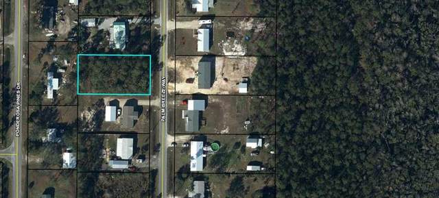 Lot 5 Palm Breeze Way, PORT ST. JOE, FL 32456 (MLS #305274) :: Anchor Realty Florida