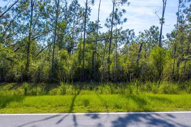 28 Jarrott Daniels Rd, WEWAHITCHKA, FL 32465 (MLS #305303) :: The Naumann Group Real Estate, Coastal Office