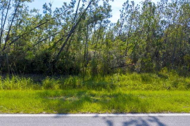 27 Jarrott Daniels Rd, WEWAHITCHKA, FL 32465 (MLS #305304) :: Anchor Realty Florida
