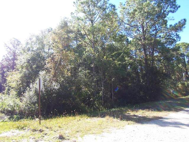 142 Franklin St, CARRABELLE, FL 32323 (MLS #305323) :: Anchor Realty Florida