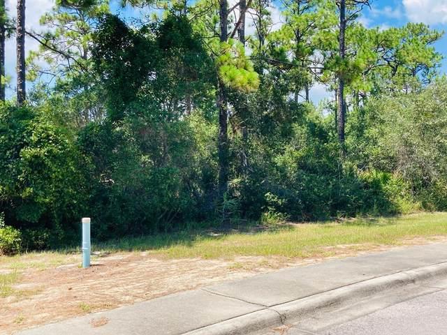 129 Anhinga Ct, CARRABELLE, FL 32322 (MLS #305438) :: The Naumann Group Real Estate, Coastal Office