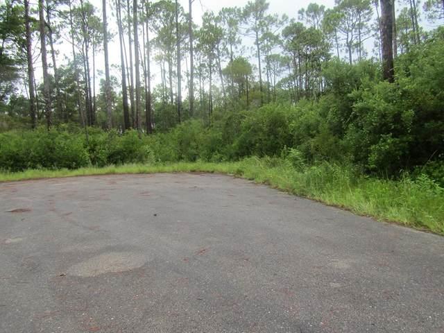 149 Bay Magnolia Ct, CARRABELLE, FL 32322 (MLS #305488) :: The Naumann Group Real Estate, Coastal Office