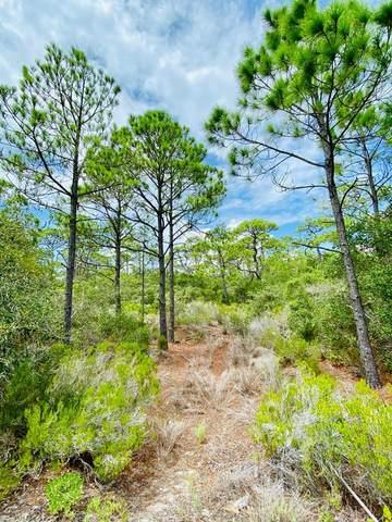 1648 Forsythia Ct, ST. GEORGE ISLAND, FL 32328 (MLS #305489) :: Anchor Realty Florida