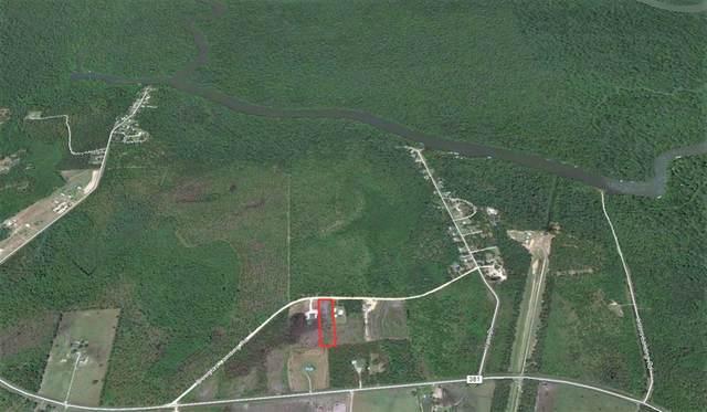455 Douglas Landing Rd, WEWAHITCHKA, FL 32465 (MLS #305553) :: The Naumann Group Real Estate, Coastal Office