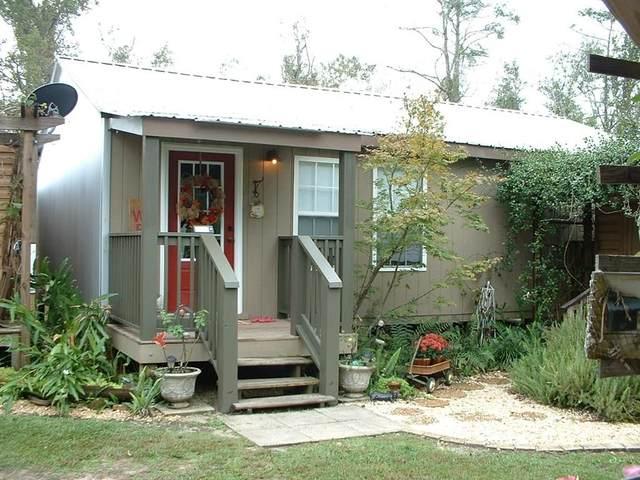 185 Patrick St, WEWAHITCHKA, FL 32465 (MLS #305560) :: Anchor Realty Florida
