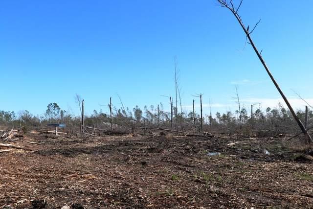140 Tremont Ct, WEWAHITCHKA, FL 32465 (MLS #305634) :: Anchor Realty Florida