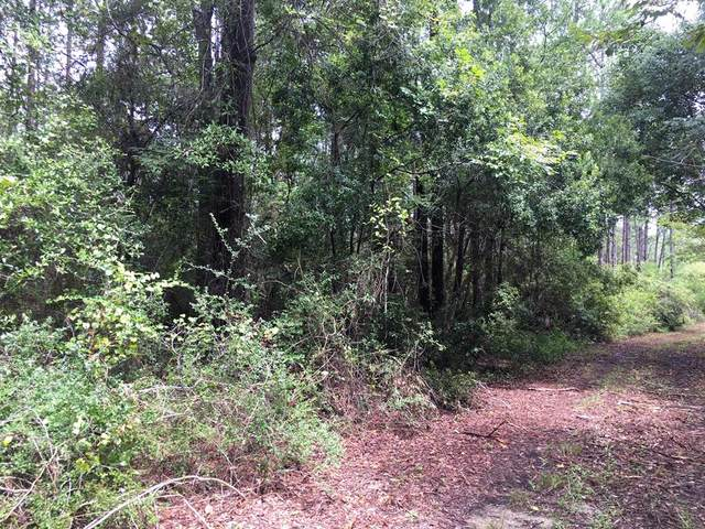 1704 Baytree Ln, CARRABELLE, FL 32322 (MLS #305643) :: Anchor Realty Florida