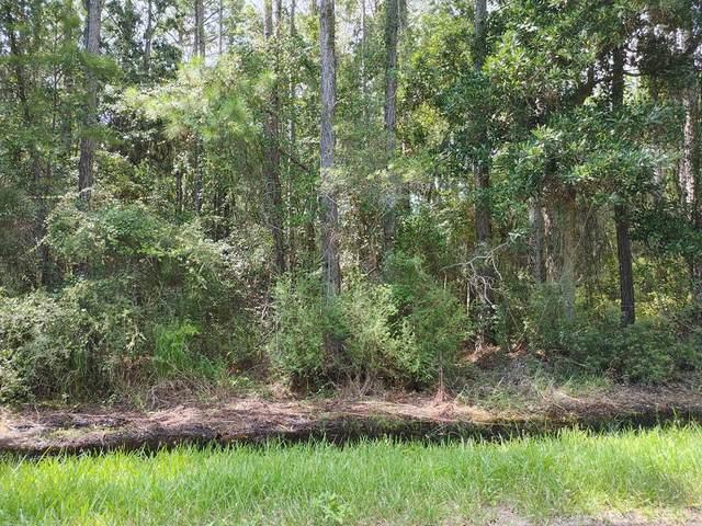 1012 Teresa Ave, EASTPOINT, FL 32328 (MLS #305705) :: The Naumann Group Real Estate, Coastal Office