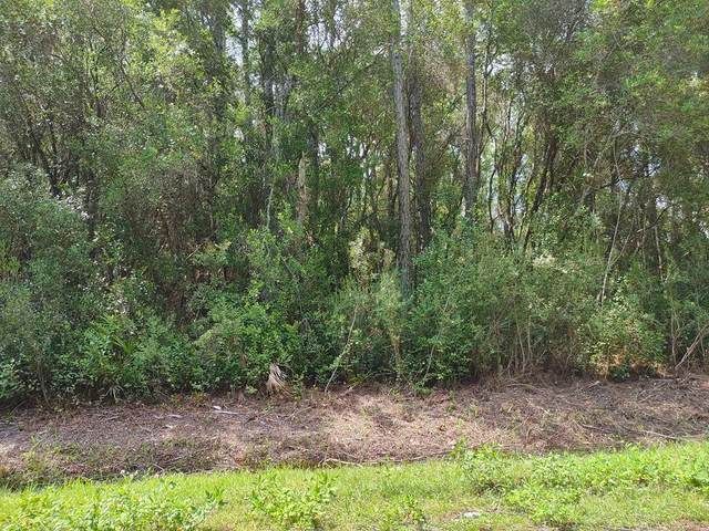 124 Delaine Cir, EASTPOINT, FL 32328 (MLS #305711) :: The Naumann Group Real Estate, Coastal Office
