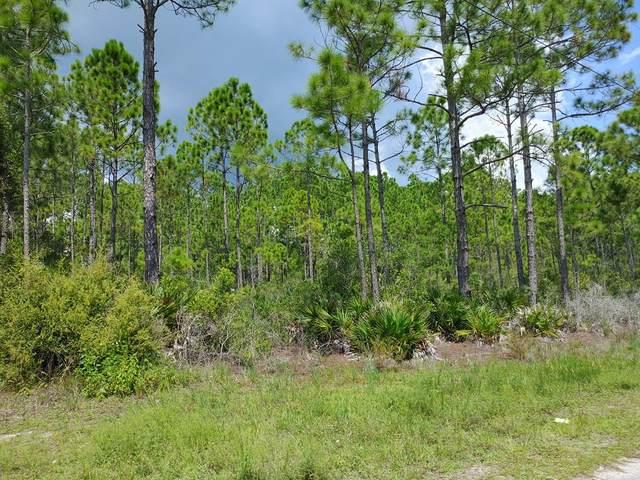 103 Delaine Cir, EASTPOINT, FL 32328 (MLS #305713) :: The Naumann Group Real Estate, Coastal Office