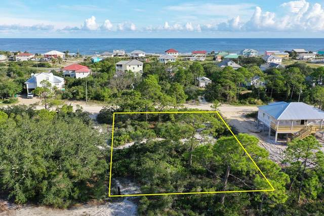 717 W Pine Ave, ST. GEORGE ISLAND, FL 32328 (MLS #305757) :: The Naumann Group Real Estate, Coastal Office