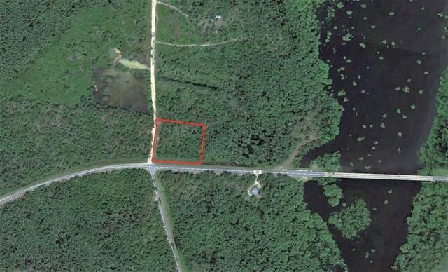 1725 Lake Grove Rd, WEWAHITCHKA, FL 32465 (MLS #305761) :: The Naumann Group Real Estate, Coastal Office