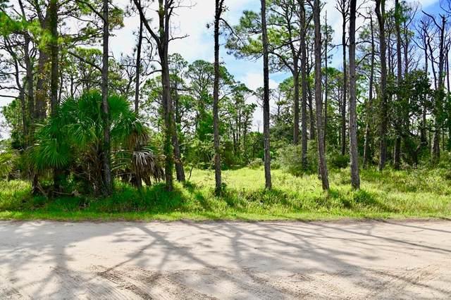 1028 Porter St, ST. GEORGE ISLAND, FL 32328 (MLS #305789) :: The Naumann Group Real Estate, Coastal Office