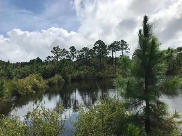 116 Otter Slide Rd, EASTPOINT, FL 32328 (MLS #305790) :: The Naumann Group Real Estate, Coastal Office