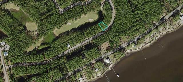 167 Royal Tern Way, CARRABELLE, FL 32323 (MLS #305798) :: The Naumann Group Real Estate, Coastal Office