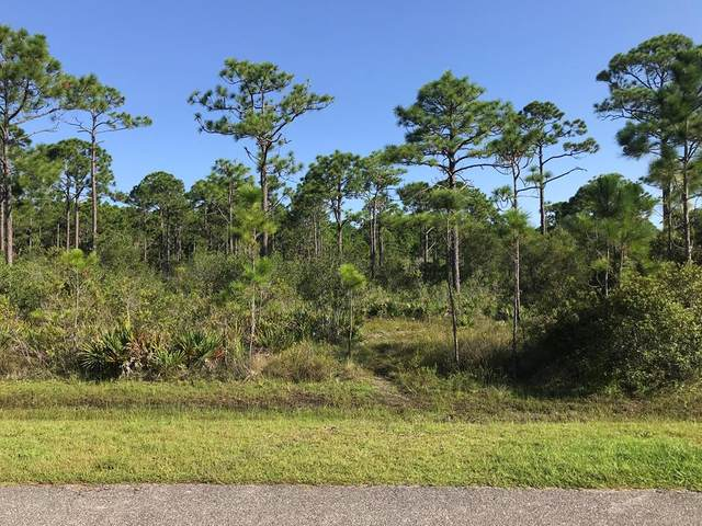 689 Longwood Ct Lot 43, EASTPOINT, FL 32328 (MLS #305811) :: Berkshire Hathaway HomeServices Beach Properties of Florida