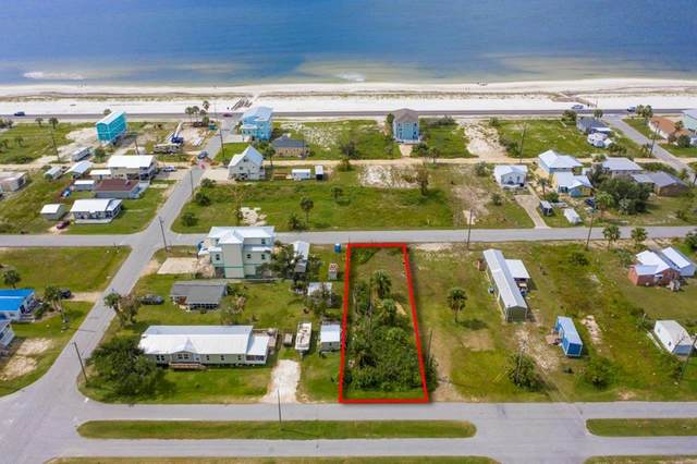 506 Fortner Ave, MEXICO BEACH, FL 32456 (MLS #305846) :: Anchor Realty Florida
