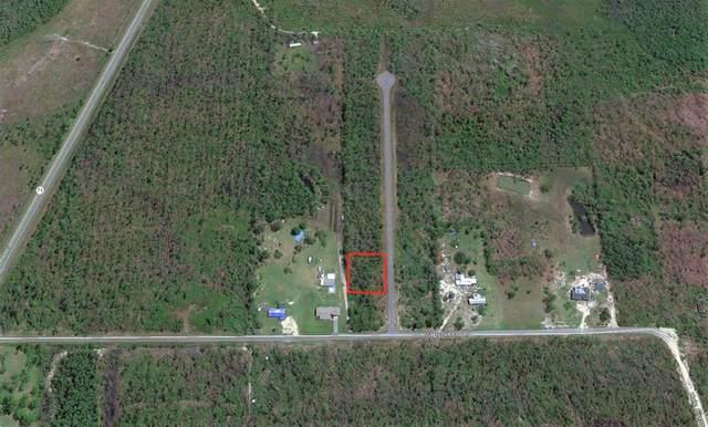 3 Jazzy Lane, WEWAHITCHKA, FL 32465 (MLS #306000) :: Anchor Realty Florida