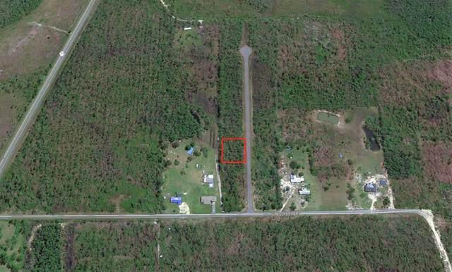 5 Jazzy Lane, WEWAHITCHKA, FL 32465 (MLS #306001) :: Anchor Realty Florida