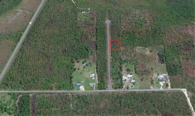 10 Jazzy Lane, WEWAHITCHKA, FL 32465 (MLS #306002) :: Anchor Realty Florida