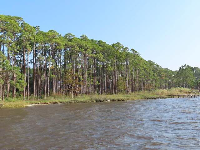 205 N Bay Shore Dr, EASTPOINT, FL 32328 (MLS #306040) :: Anchor Realty Florida