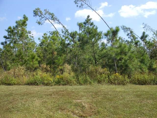 10 Wide Water Cir, WEWAHITCHKA, FL 32465 (MLS #306066) :: Anchor Realty Florida