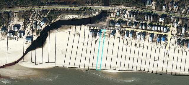 2 Sweetwater Shores Dr, PORT ST. JOE, FL 32456 (MLS #306076) :: Anchor Realty Florida