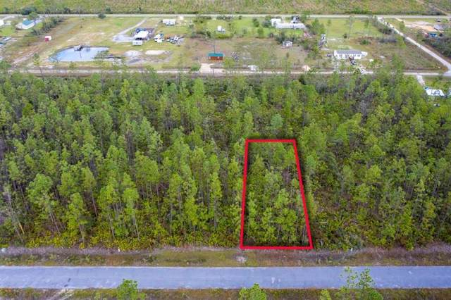 16 Amanda St, WEWAHITCHKA, FL 32465 (MLS #306110) :: The Naumann Group Real Estate, Coastal Office