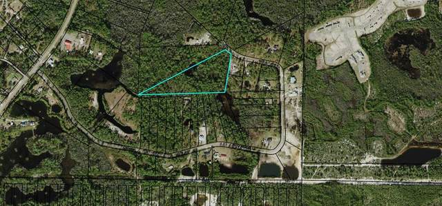 315 Baywood Dr, CARRABELLE, FL 32322 (MLS #306226) :: Anchor Realty Florida