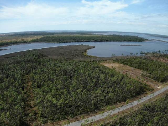 15 E Bay Dr, WEWAHITCHKA, FL 32465 (MLS #306250) :: Berkshire Hathaway HomeServices Beach Properties of Florida
