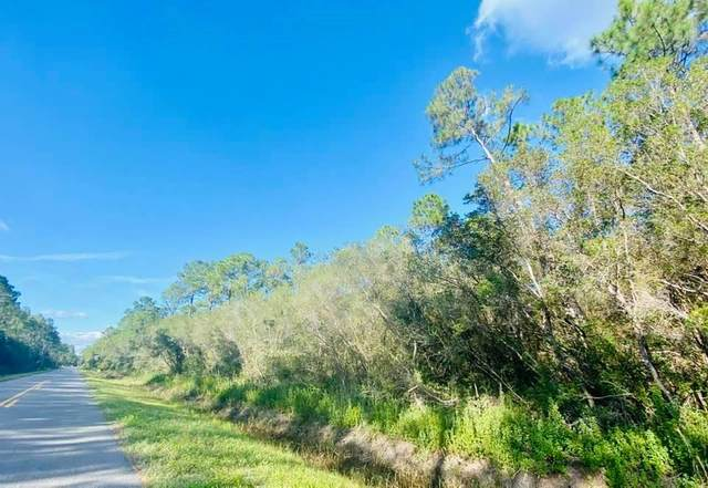 0 Linden Rd, APALACHICOLA, FL 32320 (MLS #306299) :: The Naumann Group Real Estate, Coastal Office