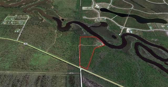 10385 Cr 386 N, WEWAHITCHKA, FL 32465 (MLS #306353) :: The Naumann Group Real Estate, Coastal Office