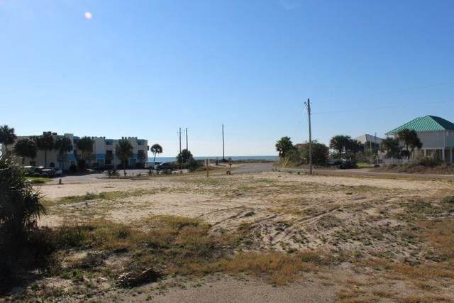 259 W Gorrie Dr, ST. GEORGE ISLAND, FL 32328 (MLS #306431) :: The Naumann Group Real Estate, Coastal Office
