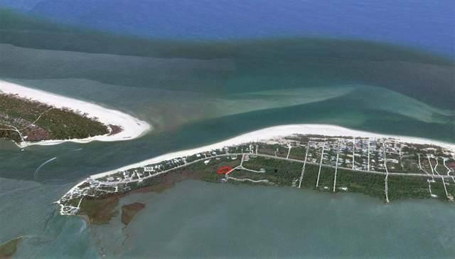 224 Sea Lavender Ln, PORT ST. JOE, FL 32456 (MLS #306470) :: The Naumann Group Real Estate, Coastal Office