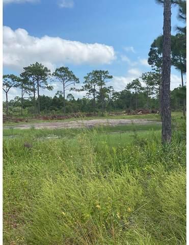 YY Patty Ln, EASTPOINT, FL 32328 (MLS #306481) :: The Naumann Group Real Estate, Coastal Office