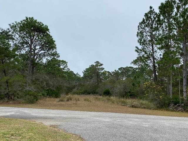 300 Sweet Bay Cir, EASTPOINT, FL 32328 (MLS #306581) :: The Naumann Group Real Estate, Coastal Office