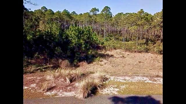 151 Marshmallow Ln, CARRABELLE, FL 32322 (MLS #306621) :: The Naumann Group Real Estate, Coastal Office